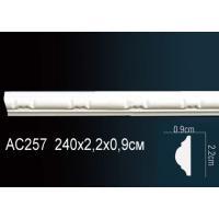 AC257 Perfect (22мм /9мм )